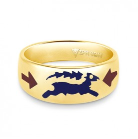 Zodiac Rashi Power Ring - Capricorn